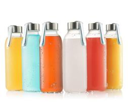 Glass Water Bottle 6 Pack 16oz Bottles with Stainless Steel