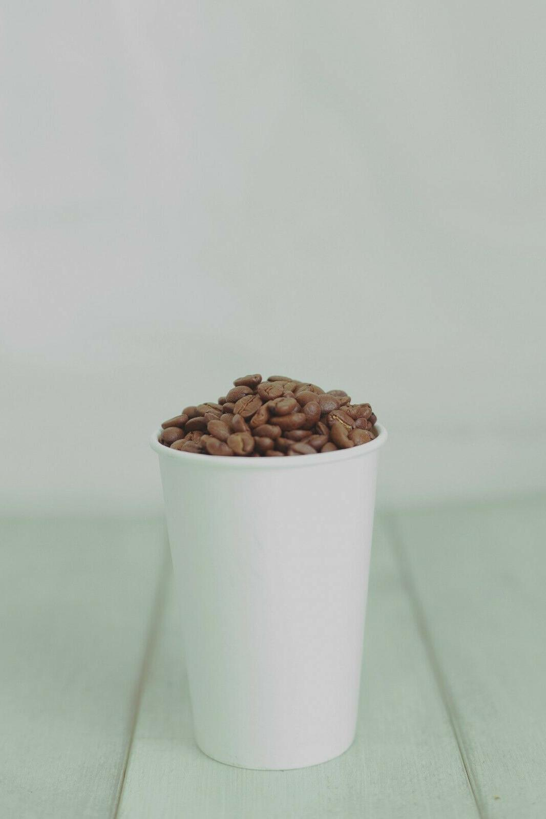 16oz double wall disposable and recyclable coffee