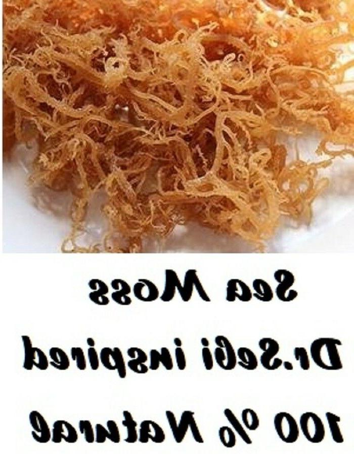 Organic Whole Leaf Irish Moss Sea Moss 1 lb  Raw WildCrafted